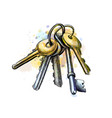 bunch keys from a splash watercolor hand vector image vector image