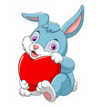 cute rabbit holding red hat vector image
