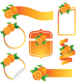 orange Label Set vector image vector image