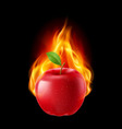 Red apple in the fire vector image vector image