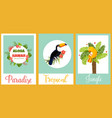 set of tropical cards with birds and elements vector image