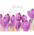 spring background with purple tulips vector image vector image