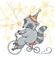 with a circus raccoon on a bike vector image