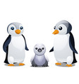 a set of fun animated penguins isolated on white vector image
