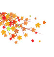 autumn leaves branch empty room space for your vector image vector image