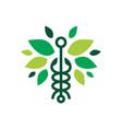 caduceus leaf snake logo icon vector image vector image