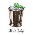 cocktail mint julep for the derby hand drawing vector image vector image