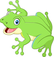 Cute frog isolated on white background vector image vector image