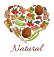 Healthy nuts grain berries in heart shape vector image