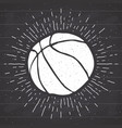 vintage label hand drawn basketball ball sketch vector image vector image