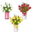 White yellow and red tulips in vases isolated vector image vector image