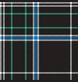 black check plaid fabric texture seamless pattern vector image vector image