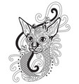 coloring antistress cat 9 vector image