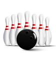 Bowling pins and bowling ball vector image vector image