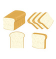 bread collection and vector image vector image