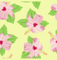 elegant seamless pattern with decorative hibiscus vector image vector image