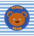 Face teddy bear brown vector image