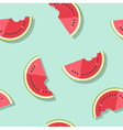 Pattern watermelons vector image vector image