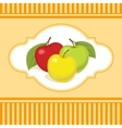 Still life of three colourful apples vector image