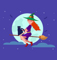 witch on a broomstick with a black cat vector image