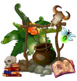 camp witch or sorcerer with pot and ritual items vector image vector image