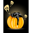 halloween pumpkin ghost and black cat on a black b vector image vector image