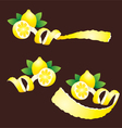 Peel Lemon Ribbon Like vector image
