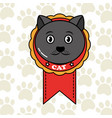 pet cat and dog vector image vector image