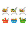 set grocery food baskets and shopping carts vector image
