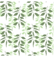 Seamless pattern leaves of green pepper vector image