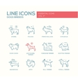 Dog breeds - line design icons set vector image