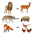 food chain animals vector image vector image