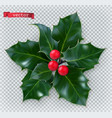 holly traditional christmas decoration 3d vector image vector image