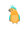 orange colorful tropical parrot in green jungle vector image