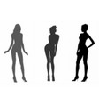 shadows beautiful girls vector image vector image