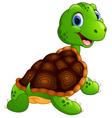 Cute turtle cartoon vector image