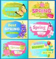 best offer spring sale advert labels flowers set vector image