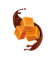 caramel cubes in liquid chocolate spiral vector image vector image