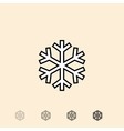 icon of snowflake vector image vector image