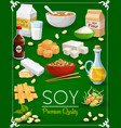 soy bean tofu milk and oil tempeh miso sauce vector image