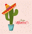 viva mexico colorful poster of cactus plant with vector image