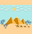 egypt camels on the background of the pyramids vector image vector image