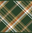 green tartan check plaid seamless pattern vector image vector image