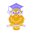 icon back to school owl vector image