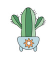in flat style home cactus in a pot vector image vector image