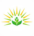 organic green leaf shine logo vector image vector image