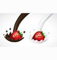 strawberry with milk and chocolate splash vector image