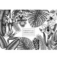 summer design with tropical plants hand drawn vector image vector image