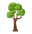 tree green nature vector image