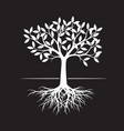 white tree with root on black background vector image vector image